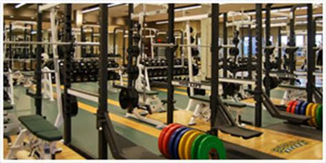 baylor weight room baylor baseball the necessity