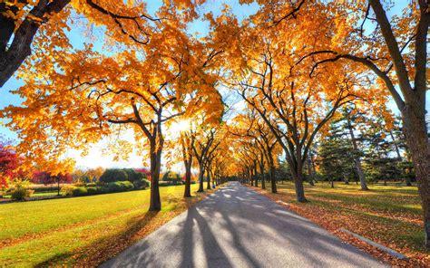 imagenes otoñales hd parque oto 241 o carretera la luz del sol fondos de pantalla