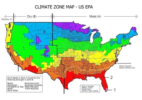 growing zone map usa gardening zones in the us garden ftempo