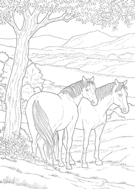 realistc cougar coloring pages printable realistc best 93 printable coloring pages of realistic horses