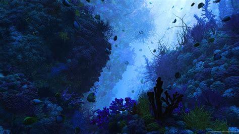 underwater hd wallpaper 1920x1080 under water wallpaper wallpapersafari