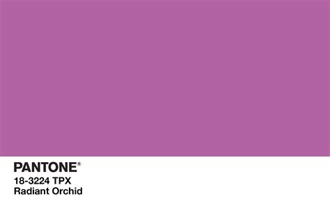 pantone s pantone s fashion influence the picophiles