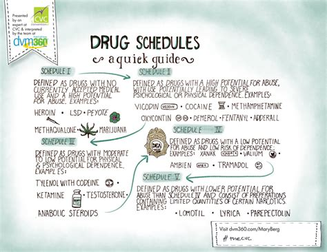 doodle dea cvc doodle controlled substances what you really need to