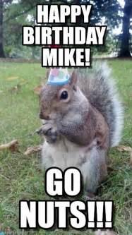 Squirrel Nuts Meme - squirrel nuts meme memes