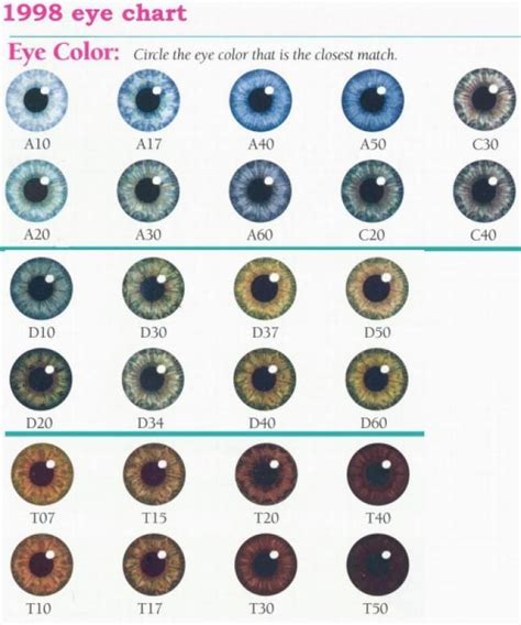 what color are my chart eye color chart denver era my twinn eye color charts