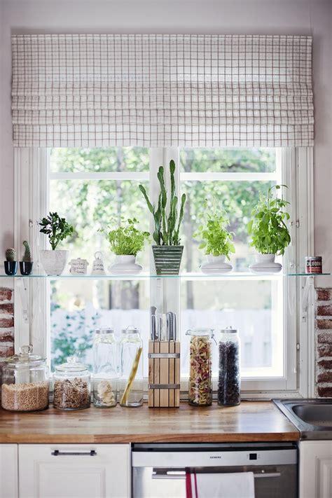Kitchen Window Plants Plant Shelf In Window Hang Your Hat