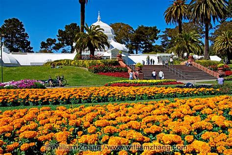 Flower Beds And Palm Trees At Conservatory Of Flowers In Golden Gate Park Flower Garden