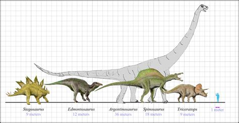 How Big Is 10 Square Meters by Dinosaurs Size Flickr Photo Sharing