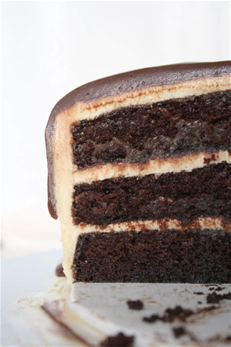 the most amazing cake chocolate peanut butter cake
