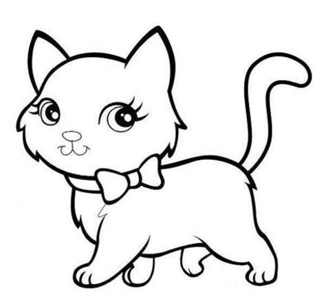 1000 ide tentang gambar kucing lucu di kucing lucu dan anak kucing lucu