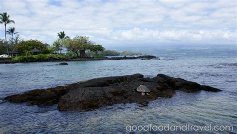 black sand beach big island wander wonder pinterest best photos 2 share black sand turtle beach