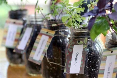 grow herbs indoors  mason jars hgtv