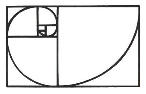 Golden Section Spiral by Create Fibonacci Spirals Mcneel Wiki