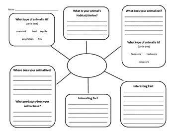 Animal Informative Writing Graphic Organizer By Nicole