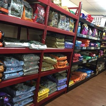 puppy store jacksonville fl pet and feed store 12 photos pet stores 8900 103rd st westside jacksonville
