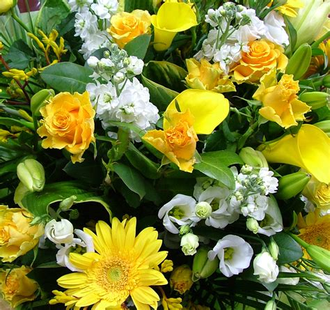 Send Fresh Flowers by Suitable Flowers To Send As Corporate Gifts Flower