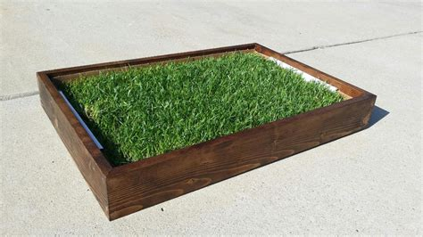 grass patch for dogs fresh patch company offers all wood sleeves for disposable real grass potties