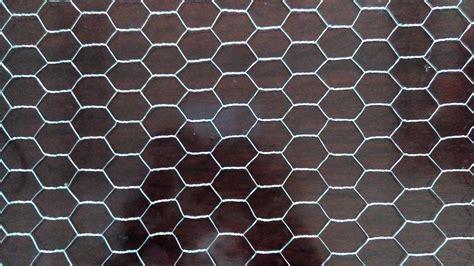 rete per gabbie rete metallica per gabbie 100 images recinzioni con