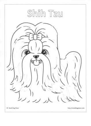 shih tzu dog colouring pages