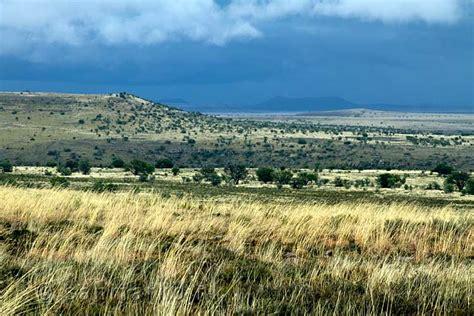 Hoop Garden by Een Uitzicht Over De Natuur Van Mountain Zebra National