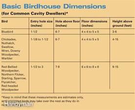 Hummingbird House Plans build a backyard birdhouse the family handyman