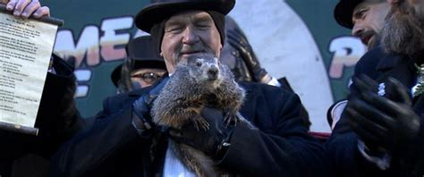 groundhog day shadow groundhog day 2018 punxsutawney phil sees shadow six