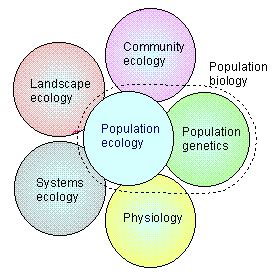 Perilaku Keorganisasian Perspektif Organisasi Bisnis teori ekologi populasi population ecology theory teori