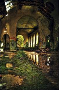 abandoned place ruins dilapidated decay abandoned nature always wins pinterest beautiful pictures of