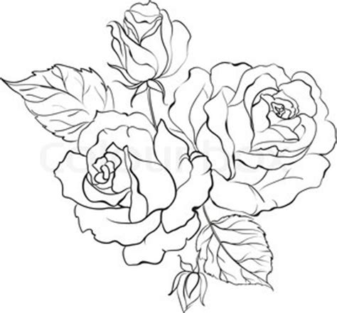 realistic rose coloring page realistic rose drawing outline sketch coloring page
