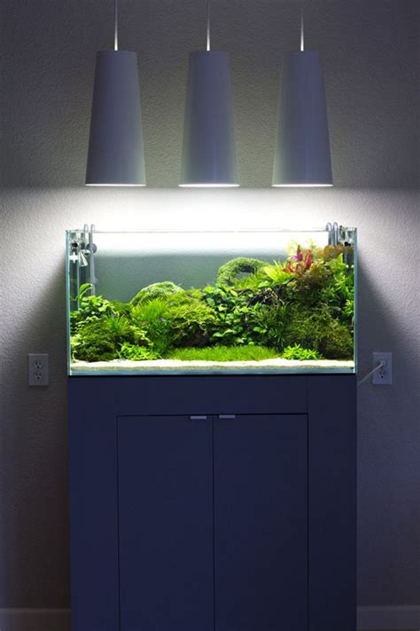 modern aquarium blue small aquarium designs