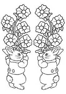 pictures colour rabbits
