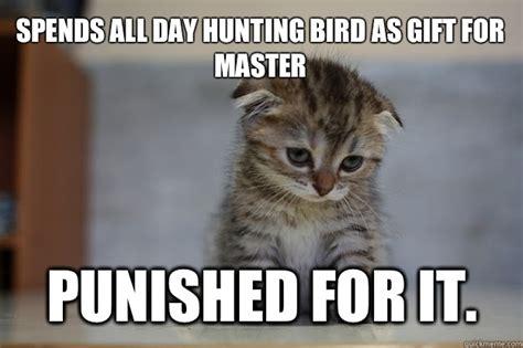 Sad Kitten Meme - sad quotes about cats quotesgram