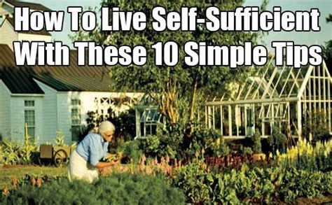 self sufficient backyard how to live self sufficient with these 10 simple tips