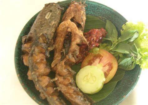 cara membuat cilok ikan lele resep cara membuat ikan lele goreng resep masakan enak
