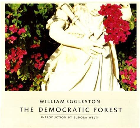 william eggleston the democratic 3958292569 the democratic forest william eggleston ウィリアム エグルストン 享楽堂