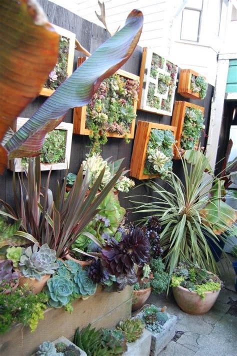 Vertical Cactus Garden Best 25 Vertical Succulent Gardens Ideas On