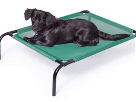 outdoor dog bed amazon outdoor dog bed amazon 28 images amazon com pipe
