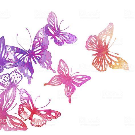 sfondi con fiori e farfalle incredibile sfondo con farfalle e fiori fotografie stock
