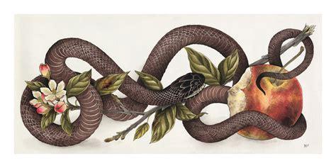 snake apple jeff p snake apple work rebels