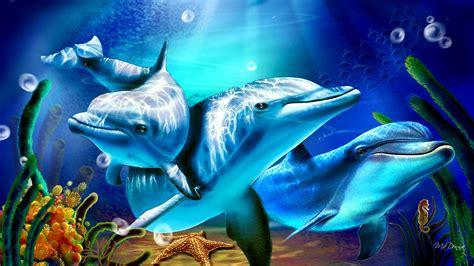 imagenes y fondos de pantalla delfines im 225 genes y fondos de delfines wallpapers