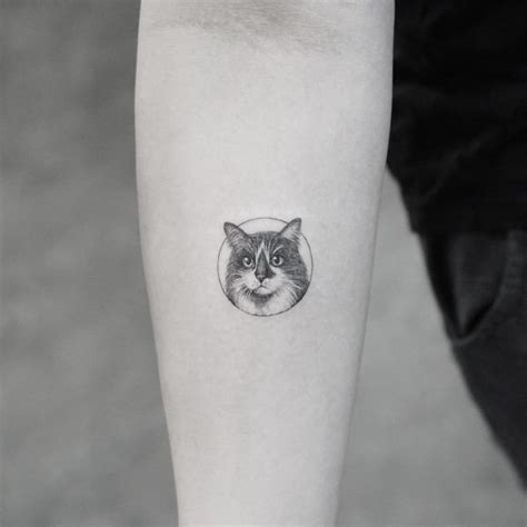 small cat tattoos small cat on arm best ideas gallery
