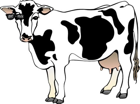 got milk cow clip art at clker com vector clip art