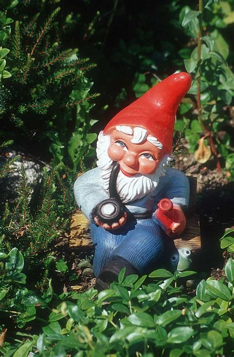 garden gnomes other creepy gnomes the creepy gnome zimbio