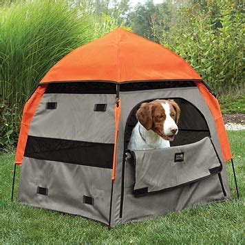 pop up crate pop up tent pop up crate orvis