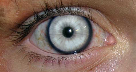 special effects color contacts special eye effects exle lenses