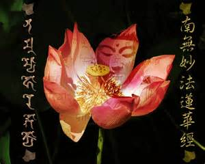 Buddha In Lotus Buddha Pink Lotus By Vishnu108 On Deviantart Apps