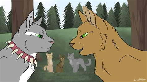 warriors colors warrior cats e o a r map colours of rivals part 6