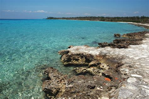 bay of pugs file bay of pigs 08 jpg wikimedia commons