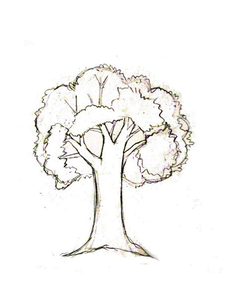 simple tree drawing how to draw a tree tutorial journaling