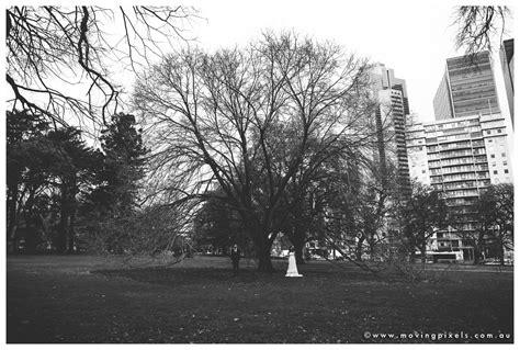 wedding wedding photographer melbourne moving pixels photography melbourne wedding photographer wedding photography